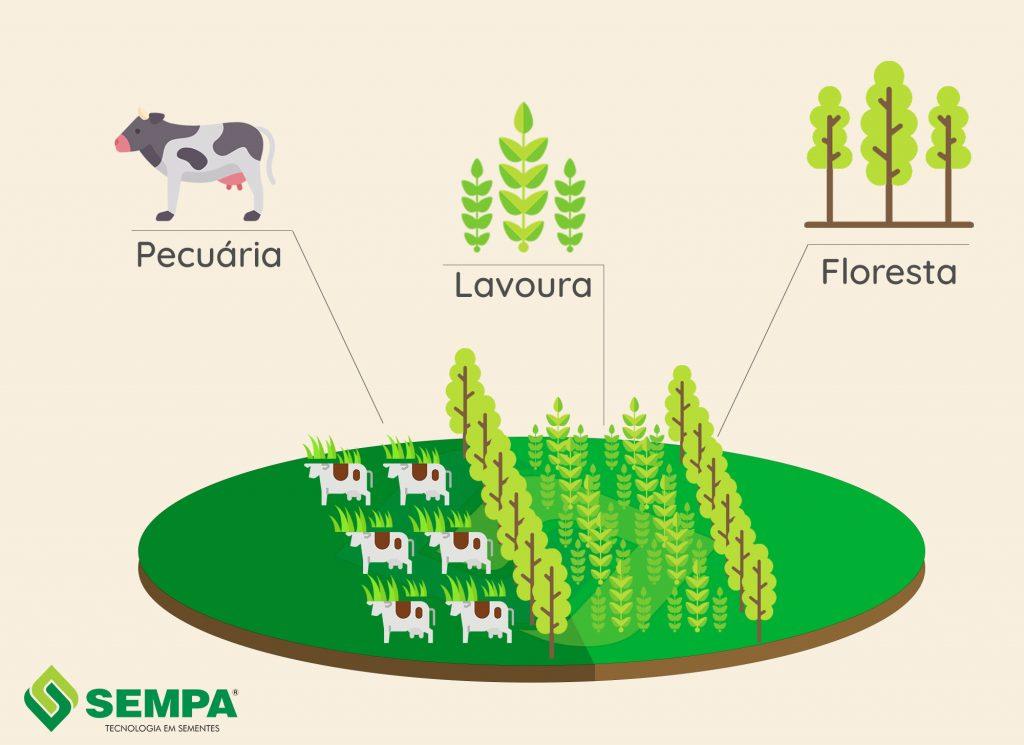 esquema de integração de lavoura com pecuária e floresta